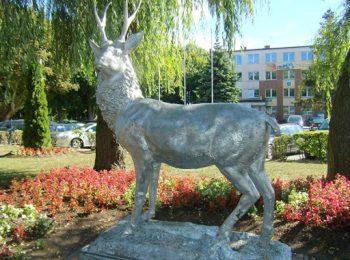 Rzeźba jelenia w Mielnie